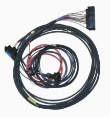 Omex 600 ECU Full Race Harness