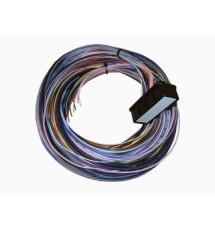 Omex 600 ECU Plug & Tails