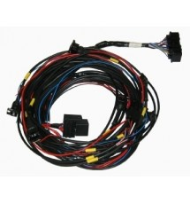 Omex 600 ECU Full Basic Harness