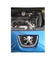 Peugeot 207 1.6 16v THP 150hp BMC CDA Carbon Intake Kit