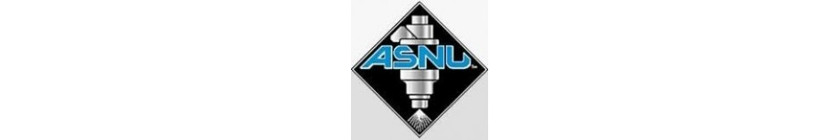 ASNU Injector Services