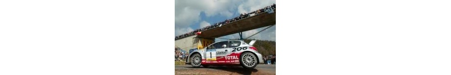 Peugeot 206 Silicone Hoses