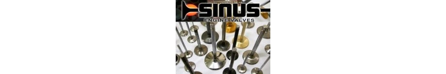 Sinus Engine Valves
